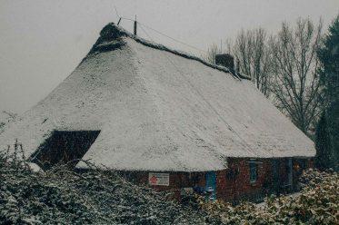 winter_bild